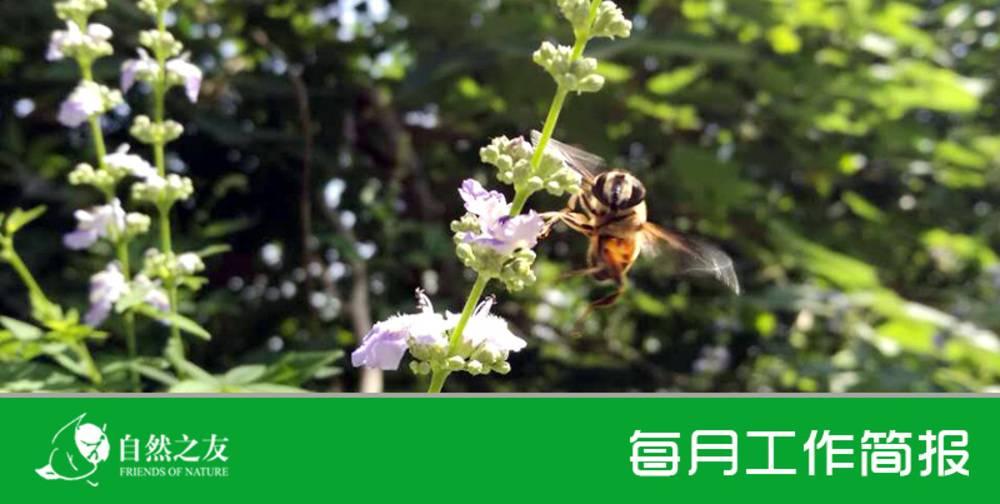 自然之友每月工作简报 | 2017.5